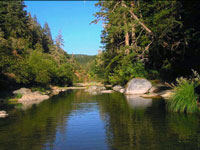 Wheatfield Fork, Gualala River, upstream from Clark's Crossing
