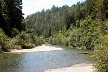 Wild & Scenic Gualala River, winding through coastal redwood forest