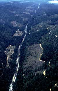 Gualala River, north-to-south aerial, June 1999